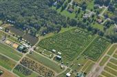 WEZX Offers A-MAZE-ING Corn Maze