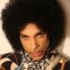 Prince2015.jpg