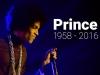 princerip800x450bluev11.jpg