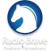 RadioBrave2016.jpg