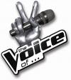 voicelogo2018.jpg