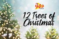 12treesofchristmas775x515.jpg