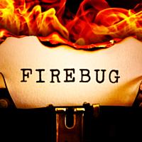 firebug2021-2021-07-21.png